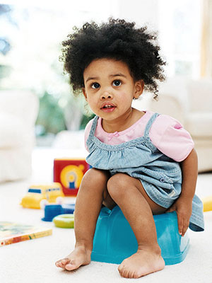 Toddler potty chairs uk